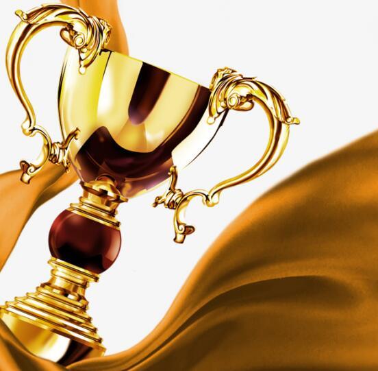 我司荣获2021年安徽省专精特新冠军企业